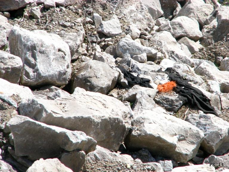 Orange & Rocks